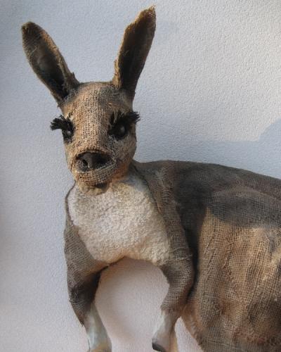kangoeroe fam 2.jpg